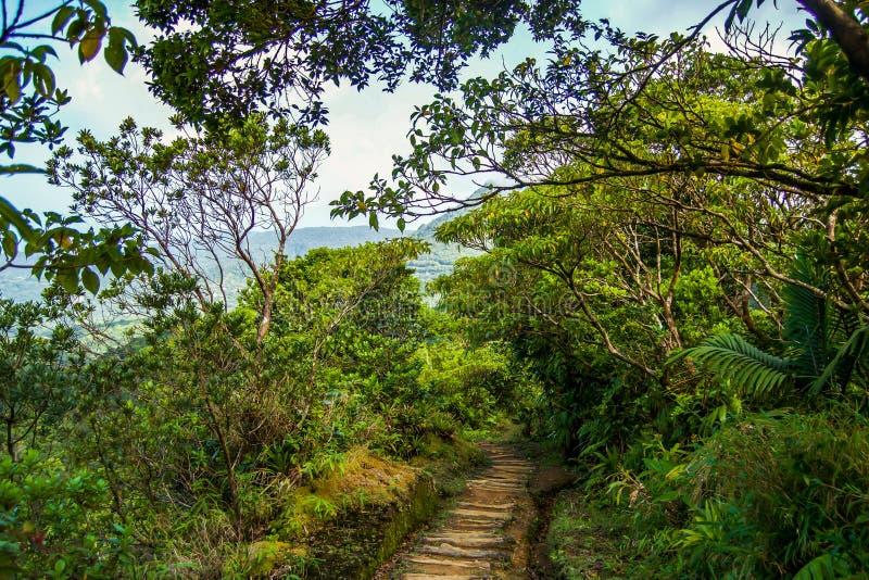 Dominica Island-het koken de mening van de meerberg royalty-vrije stock afbeeldingen