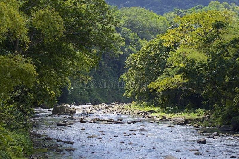 Dominica som är karibisk arkivfoto