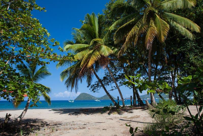 Dominica-Strand stockbilder