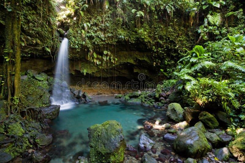 dominica utforskning royaltyfri fotografi