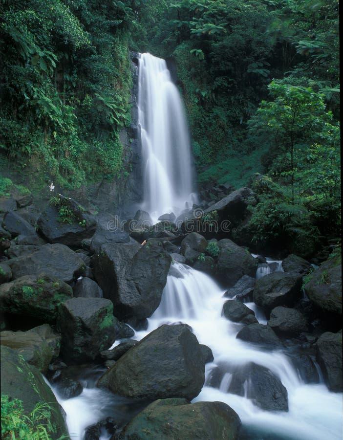 dominica vattenfall fotografering för bildbyråer