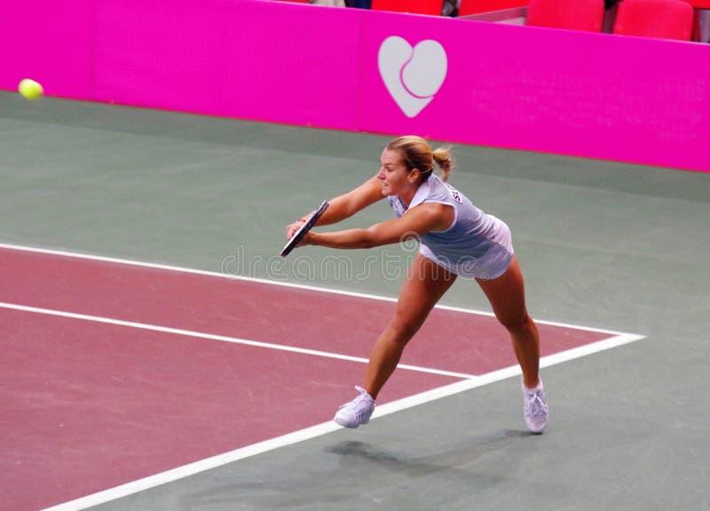 Dominika Cibulkova stock image