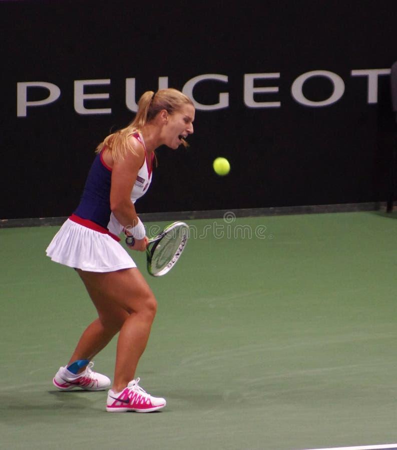 Dominika Cibulkova plays in Fed Cup match, Slovakia stock image