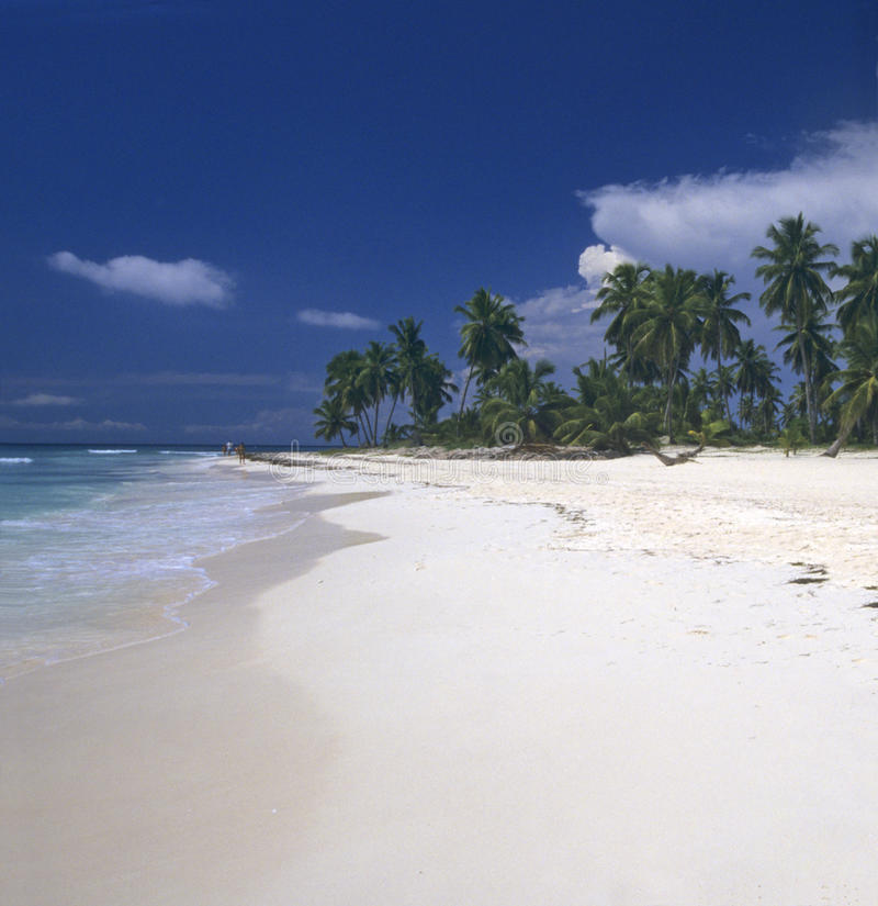Dominikanische Republik des Saona Inselstrandes lizenzfreie stockbilder