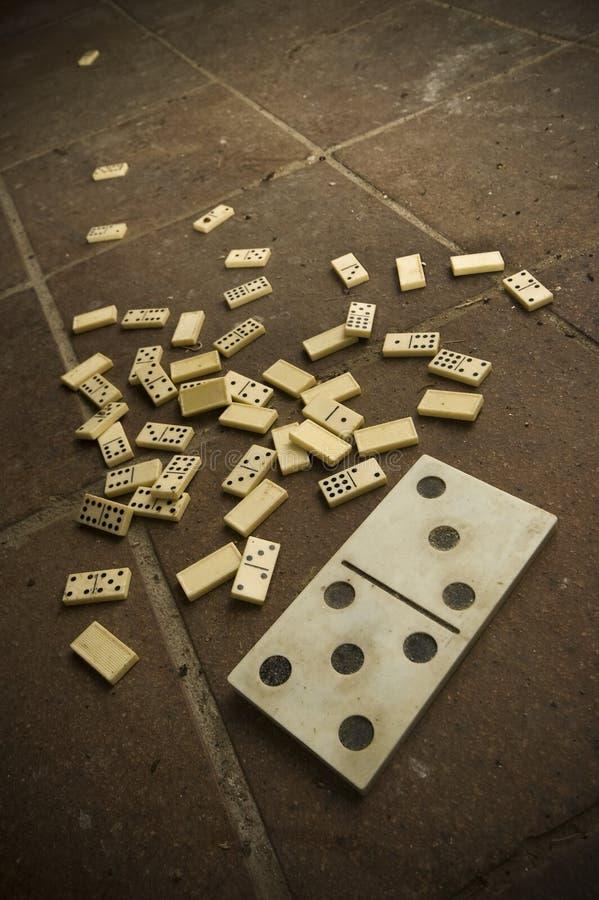 Domino figliata immagine stock libera da diritti