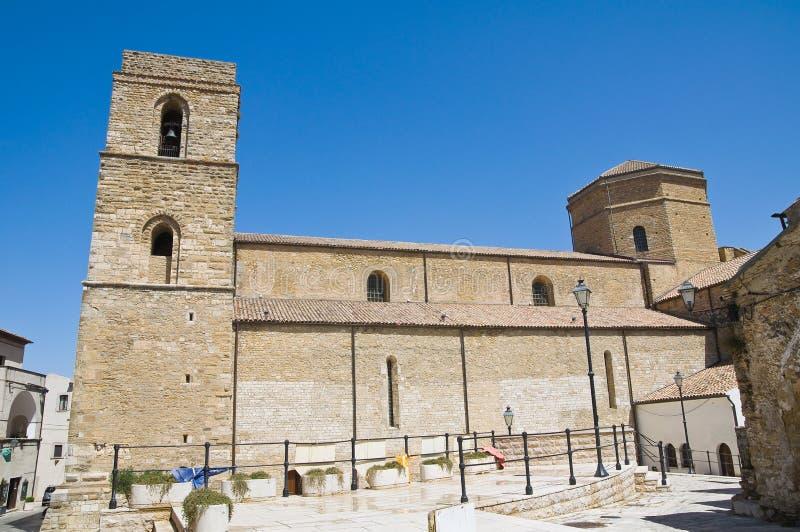Domkyrka av Acerenza Basilicata italy arkivfoto