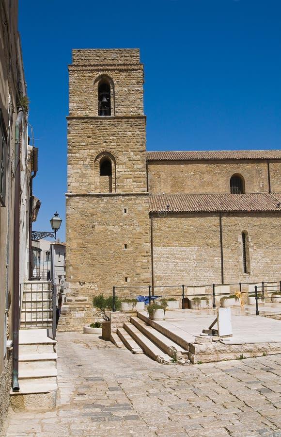 Domkyrka av Acerenza Basilicata italy fotografering för bildbyråer