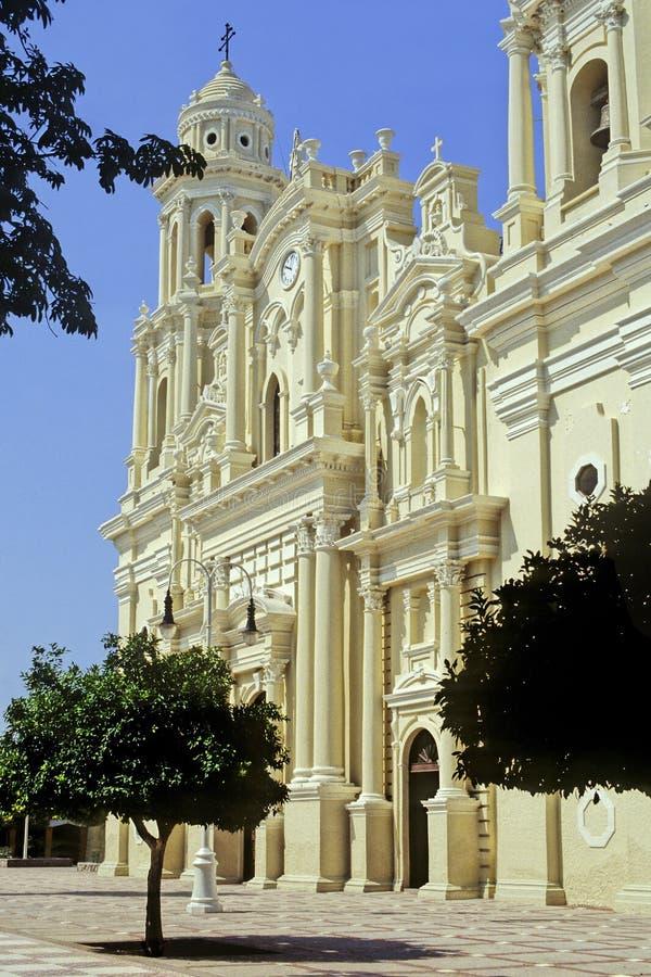 Domkyrka av Hermosillo royaltyfria foton