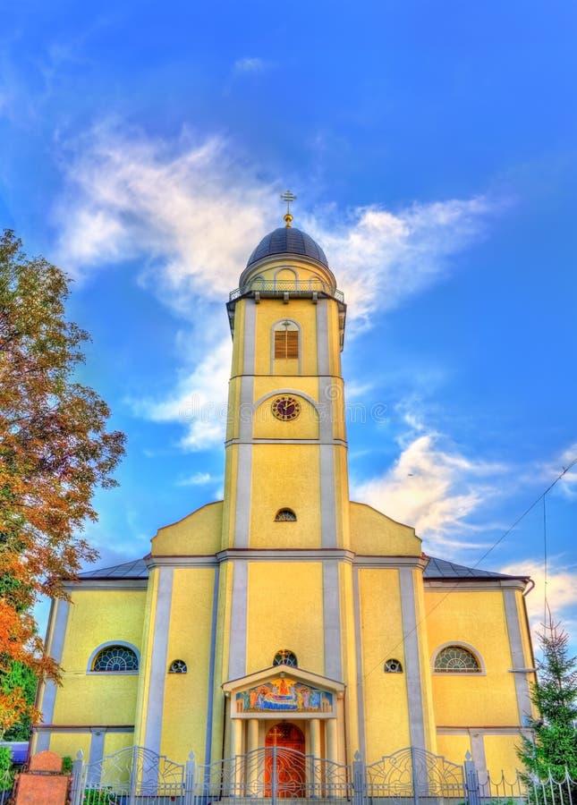 Domkyrka av Dormitionen av Theotokosen i Mukacheve, Ukraina fotografering för bildbyråer