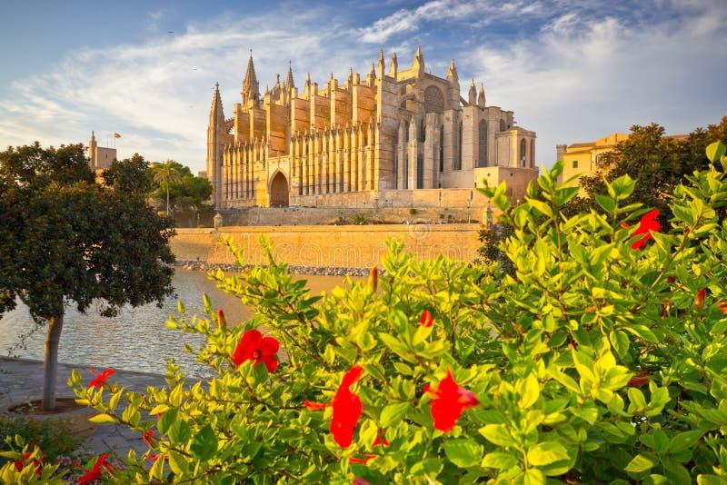 Domkyrka av Santa Maria av Palma de Mallorca, La Seu, Spanien arkivfoto
