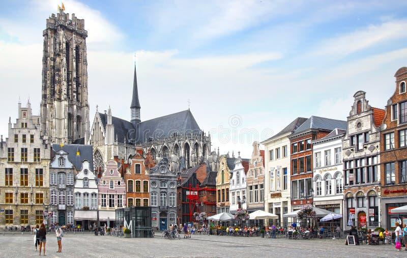 Domkyrka för St Rumbolds på Grote Markt Mechelen arkivbild