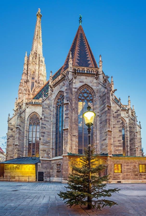 Domkyrka för St Stephan och julträd arkivbild