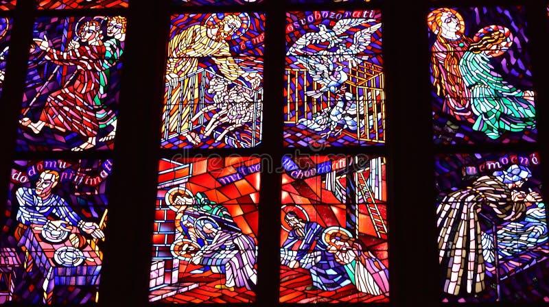 Domkyrka för St Vitus i Prague royaltyfria foton