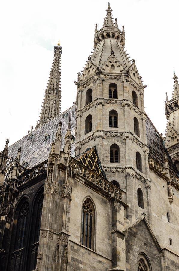 Domkyrka f?r St Stephan i Wien ?sterrike arkivfoto