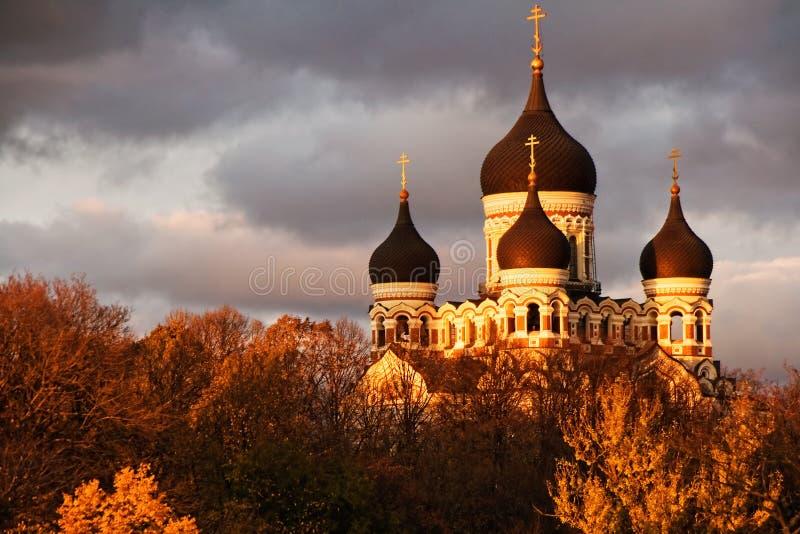 domkyrka nevsky tallinn royaltyfria foton