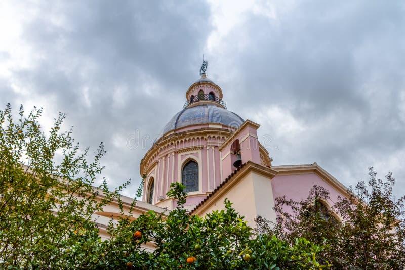 Domkyrkabasilika av den Salta kupolen - Salta, Argentina royaltyfri fotografi