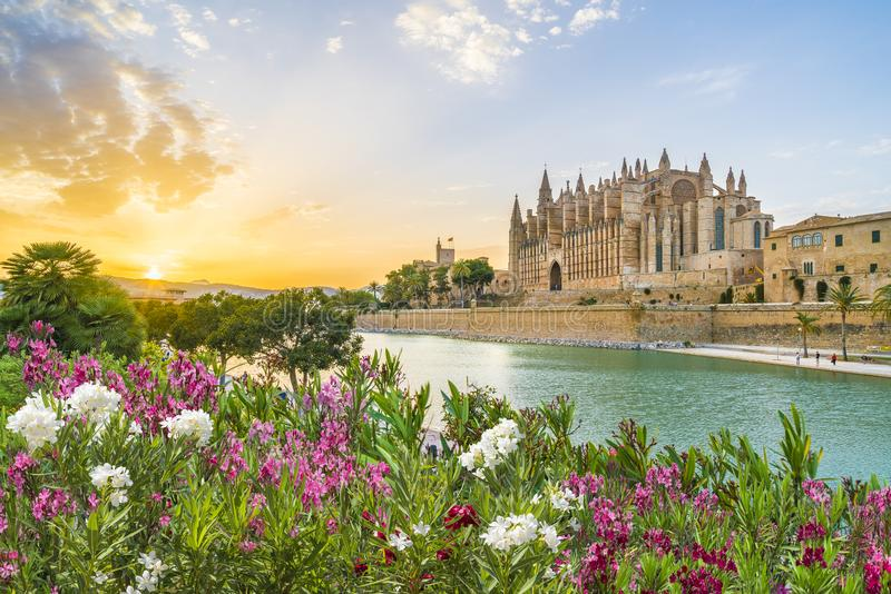 DomkyrkaLa Seu, Palma de Mallorca öar, Spanien royaltyfri fotografi