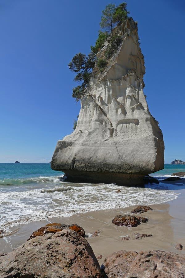 Domkyrkaliten vik en härlig strand i Nya Zeeland arkivfoto