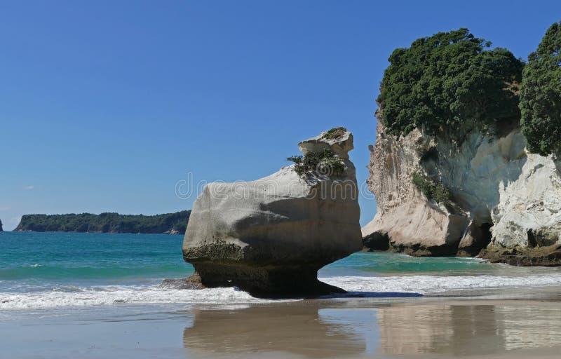 Domkyrkaliten vik en h?rlig strand i Nya Zeeland fotografering för bildbyråer