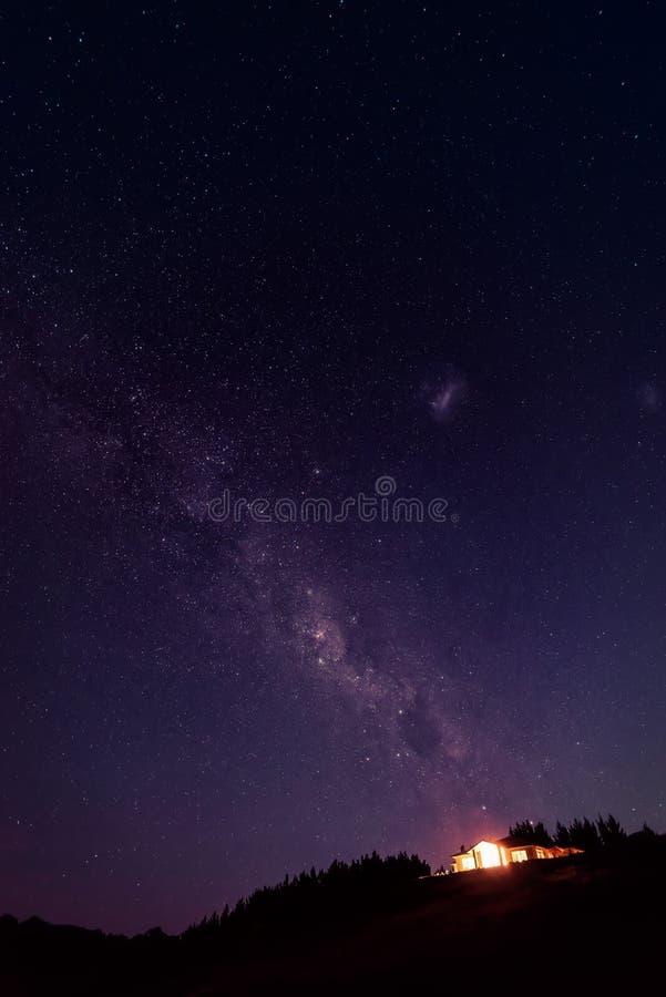 Domkyrkaliten vikCoromandel halvö Nya Zeeland royaltyfria bilder