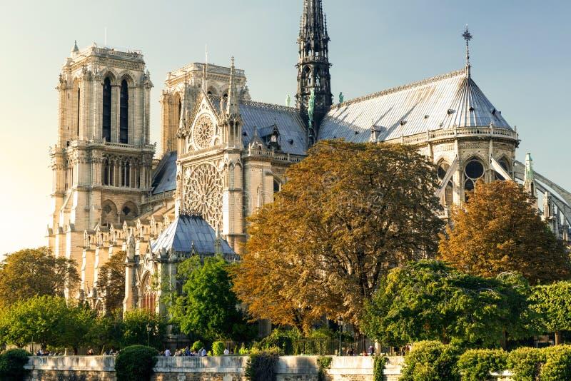 Domkyrkan av Notre Dame de Paris på solnedgången royaltyfri bild