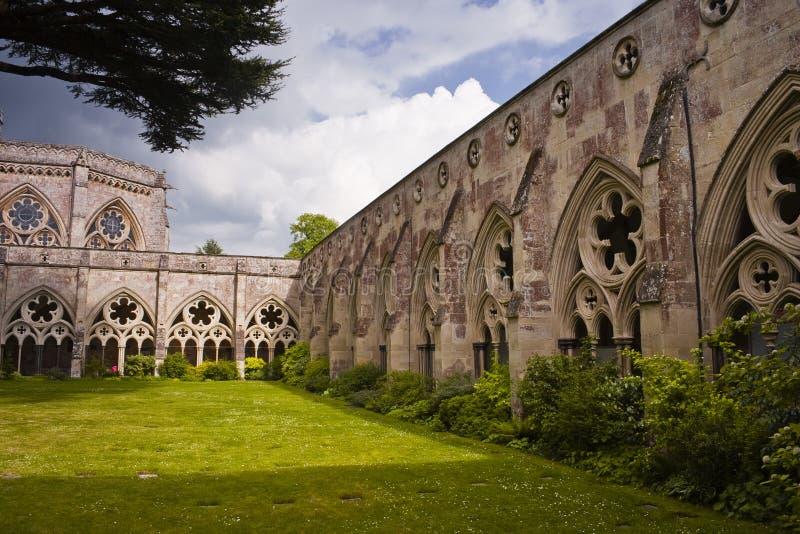 domkyrkan cloisters salisbury royaltyfria bilder