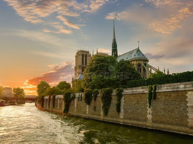 DomkyrkaNotre-Dame de Paris i vår på solnedgången arkivfoto