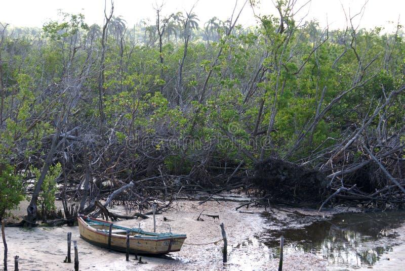 Dommages d'Ike d'ouragan photo libre de droits