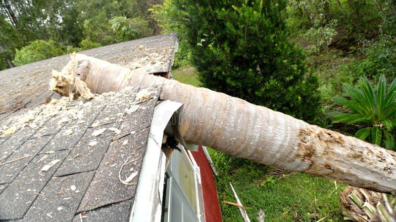 Dommages de la tornade EF0 sur le toit de maison image libre de droits