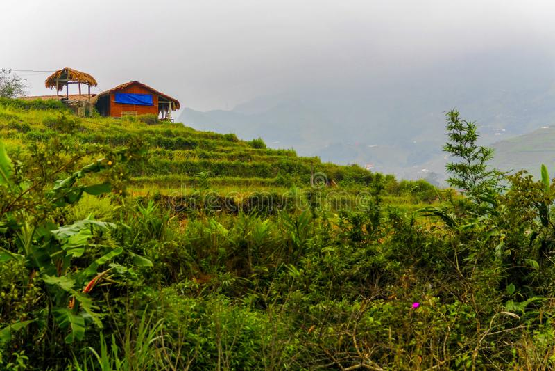 Domowa pozycja na ryżowym tarasie w Sa Pa, Wietnam obraz stock