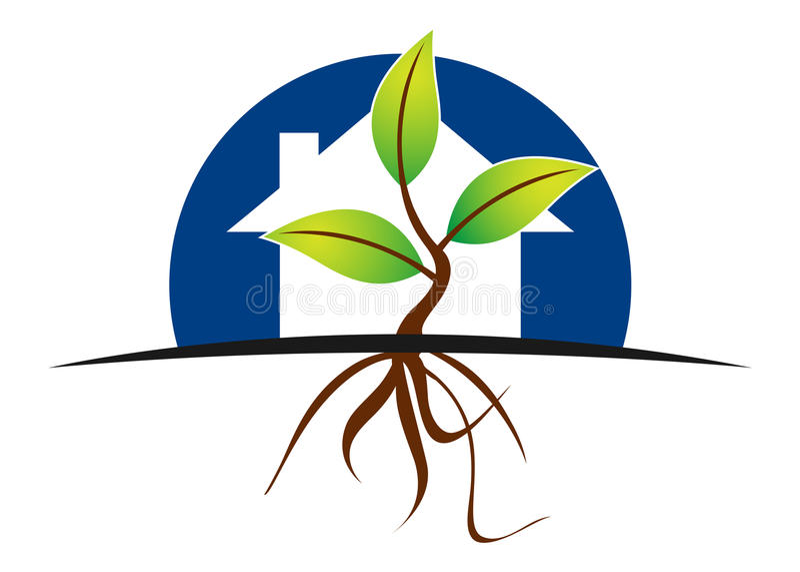 domowa roślina ilustracji