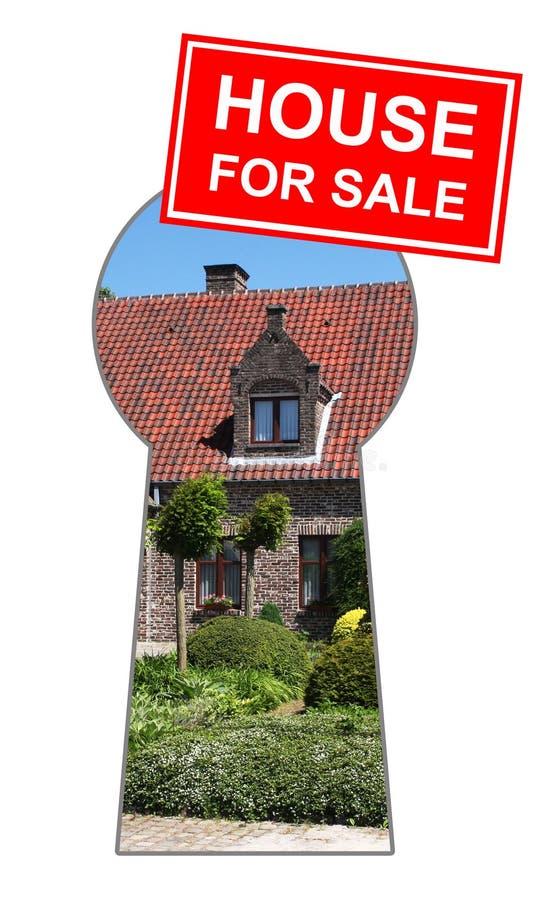 domowa sprzedaż ilustracji