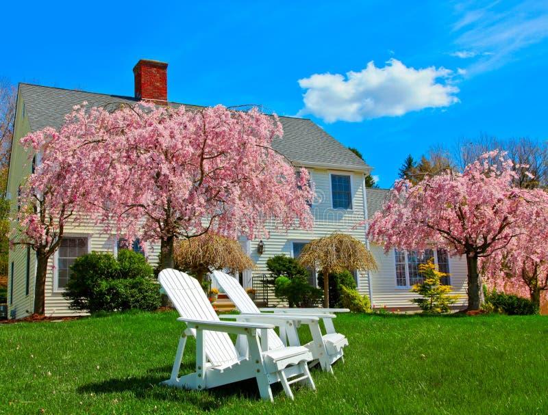 domowa wiosna obraz royalty free