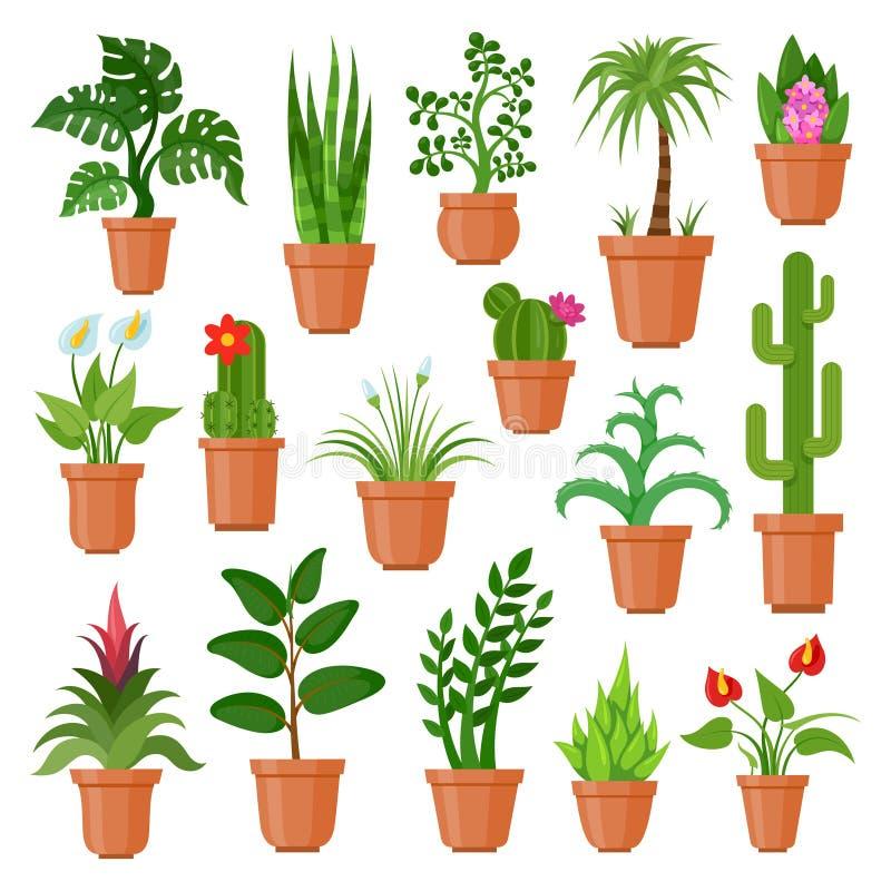 Domowe garnek rośliny ilustracja wektor