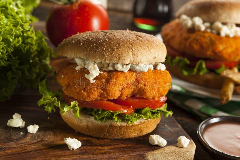 Domowej roboty Bawolia kurczak kanapka zdjęcia royalty free