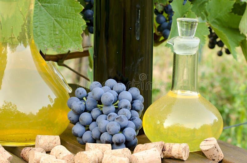 Domowej roboty biel i czerwone wino od winogron Dekantatory, butelki, korki i winogrona fotografujący przeciw tłu, zdjęcia royalty free