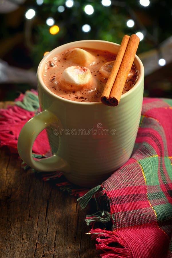 Domowej roboty Ciepła Gorąca czekolada fotografia stock
