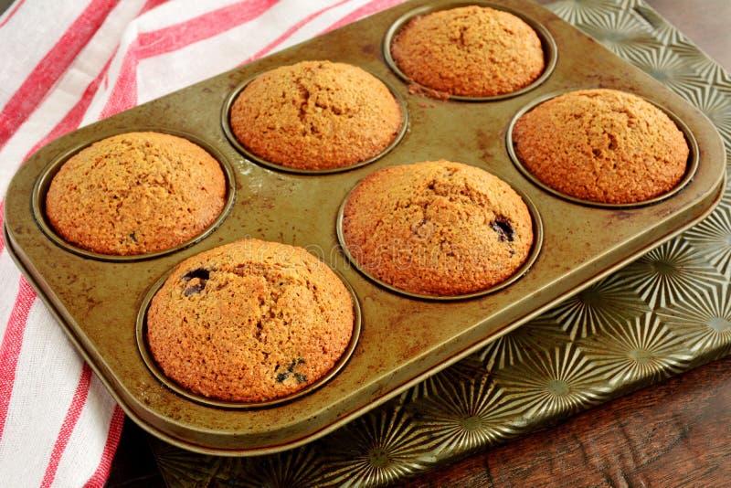 Domowej roboty czarnej jagody otrębiaści muffins zdjęcia stock