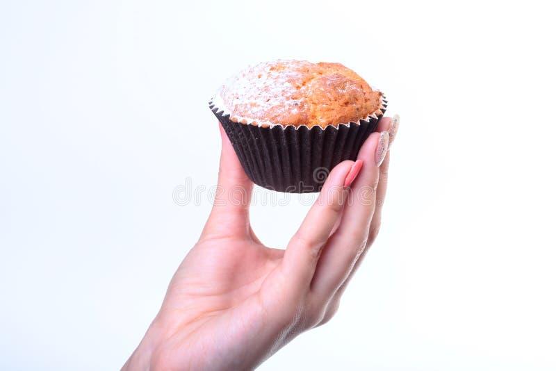Domowej roboty czarnej jagody rudni czekoladowi muffins z sproszkowanym cukierem i świeżymi jagodami w kobiety ręce obraz stock