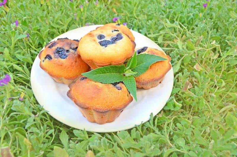 domowej roboty czarnych jagod muffins obraz stock