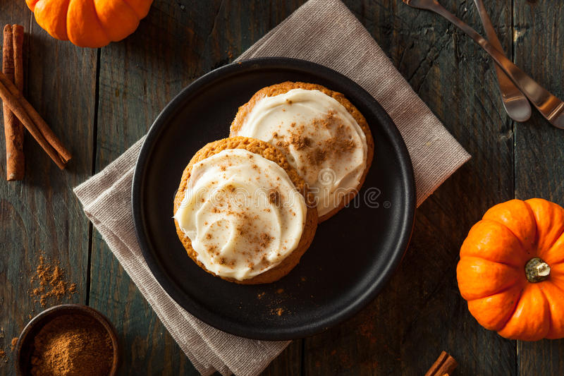 Domowej roboty Dyniowi pikantność ciastka obraz royalty free