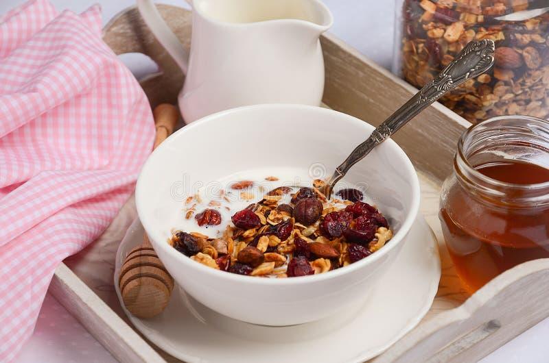 Domowej roboty granola z dokrętkami i wysuszonymi cranberries z mlekiem i miodem obraz royalty free