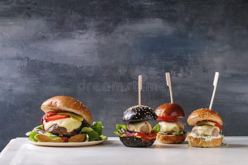 Domowej roboty hamburger rozmaitość zdjęcie stock