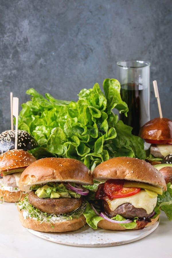 Domowej roboty hamburger rozmaitość obraz stock