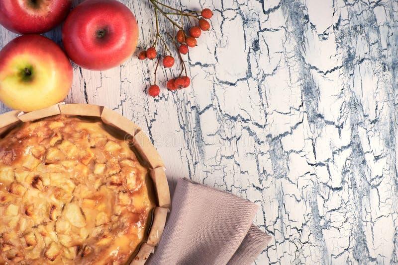 Domowej roboty jabłczany kulebiak z jabłkami na lekkim nieociosanym tle obraz stock