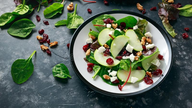 Domowej roboty jesieni Cranberry Jabłczana sałatka z orzechem włoskim, feta serem i warzywami, zdjęcia stock
