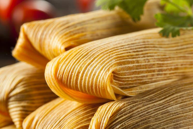 Domowej roboty kukurudzy i kurczaka tamales obraz royalty free