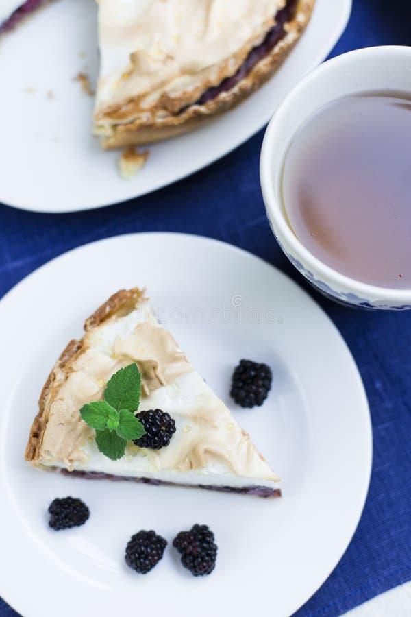 Domowej roboty kulebiak z jagodami i bezą obraz royalty free