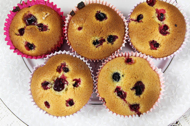 Domowej roboty muffins obraz royalty free