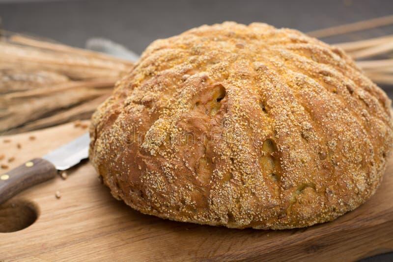 Domowej roboty piec wokoło chleba z kukurudzą i banatką zdjęcie royalty free